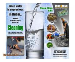 Vila,Flat,Office Deep/Steam Cleaning Services(Sanitize)