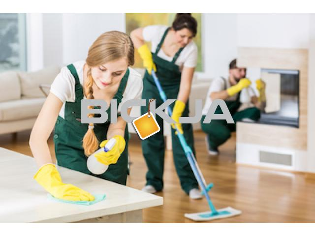 PROFESSIONAL MAID & CLEANING SERVICES - 1/1