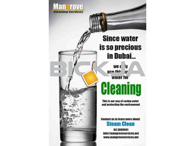 Professional Deep Cleaning Services in Dubai-Sanitize- - 1/1