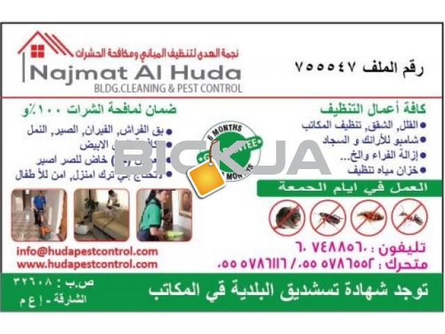 Pest Control Service @ AED 99 only - 1/1