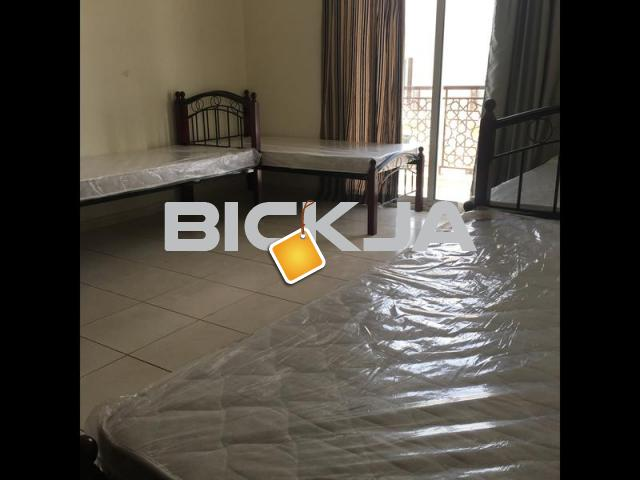 Int'l city*6 people total 1BR Available immediately* Emirates Cluster - 1/1