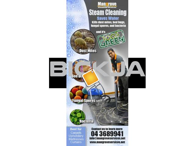 Steam Cleaning of Curtains, Carpets, Mattress, Sofa & Oven - 1/1