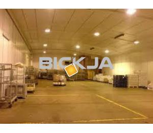 Warehouse Deep Cleaning Services in the UAE-0545832228