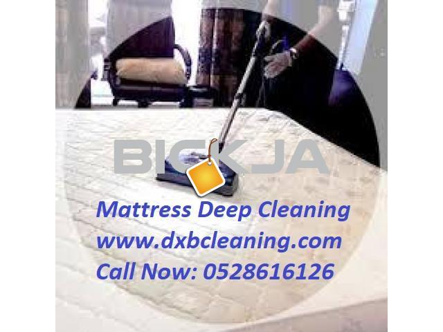 Carpet Shampoo Cleaning - 1/3