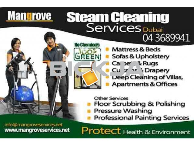 Drapes, Upholstery, Mattress, Carpet Steam Cleaning (Sanitize) - 1/2