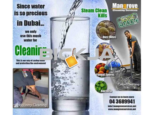 Move-in/out Deep/Steam Cleaning Services in Dubai-Sanitize - 1/1