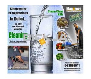 Move-in/out Deep/Steam Cleaning Services in Dubai-Sanitize