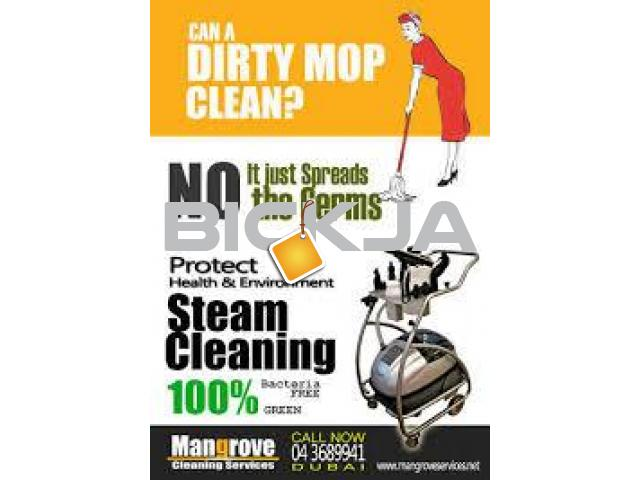 Professional Deep/Steam Cleaning Services in Dubai - 1/1