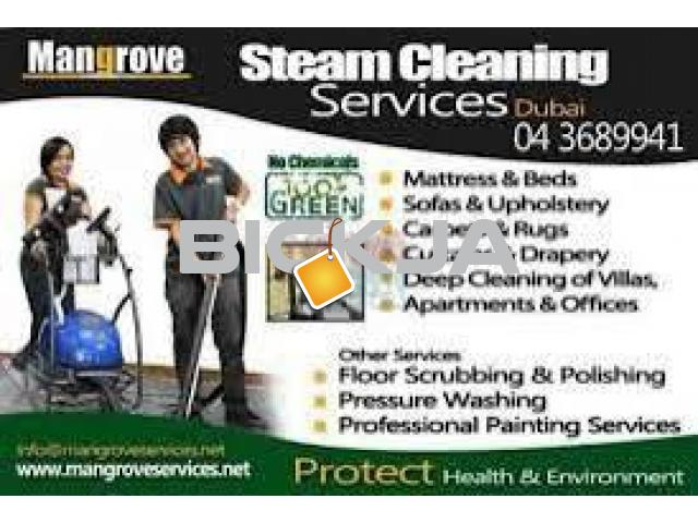 Professional Deep/Steam Cleaning Services - Palm Jumeirah, Dubai Marina - 1/1