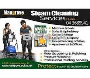 Professional Deep/Steam Cleaning Services - Palm Jumeirah, Dubai Marina