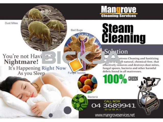 deep steam and cleaning servicces - 1/2