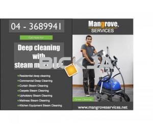 Curtain, Carpet, Upholstery, Mattress and Oven Steam Cleaning