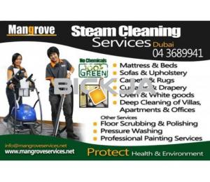 Professional Deep Cleaning Services for Residential Properties - Apartment, Villa-Sanitize/Sterilize