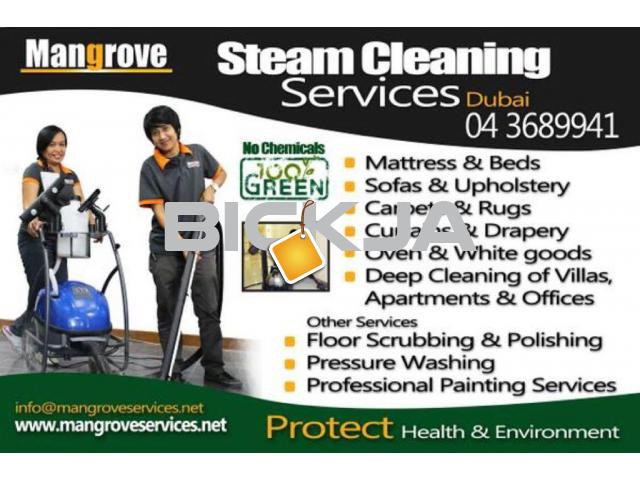 Curtain, Carpet, Sofa, Mattress, Oven Steam Cleaning Services-Sanitization - 1/1