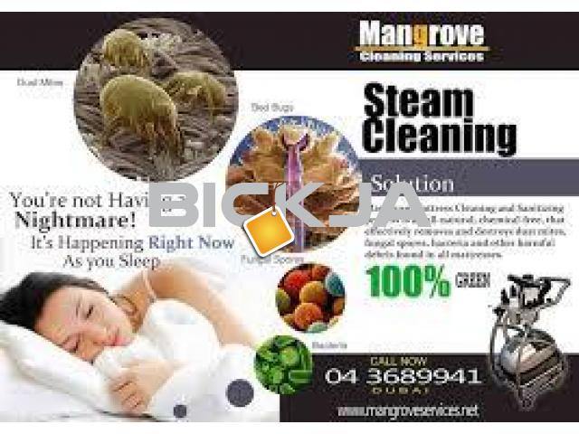 deep steam  cleaning services and mattress steam cleaning in dubai - 1/2