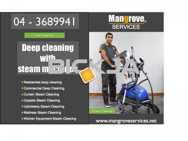 deep steam  cleaning services and mattress steam cleaning - 4/4