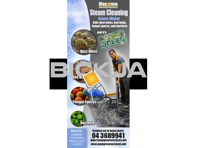 curtain Steam cleaning and sofa steam cleaning services in dubai - 1/2