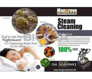 curtain Steam cleaning and sofa steam clean